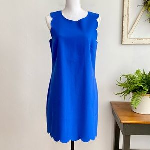 J Crew Royal Blue Scalloped Hem Sleeveless Dress